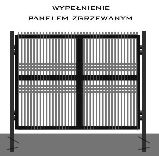 panel_2_duza